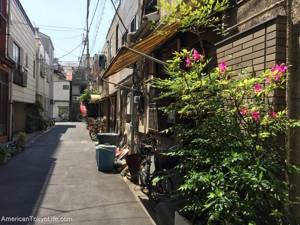 日本-小道-細道-住宅-japan-streets-houses